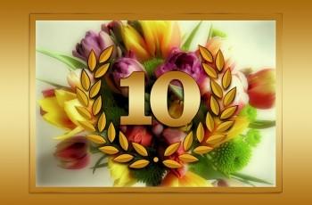 10 mandamentos para seu bolso em 2015